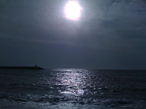 20110819-173250.jpg