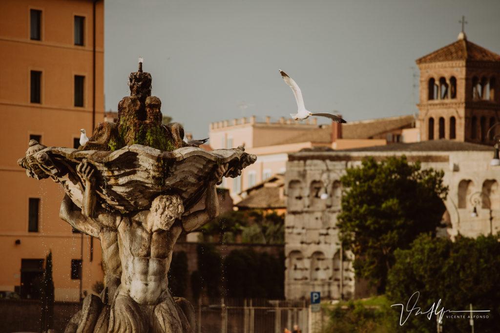 Estatuas y aves en Roma. Paseo fotográfico por la ciudad de Roma